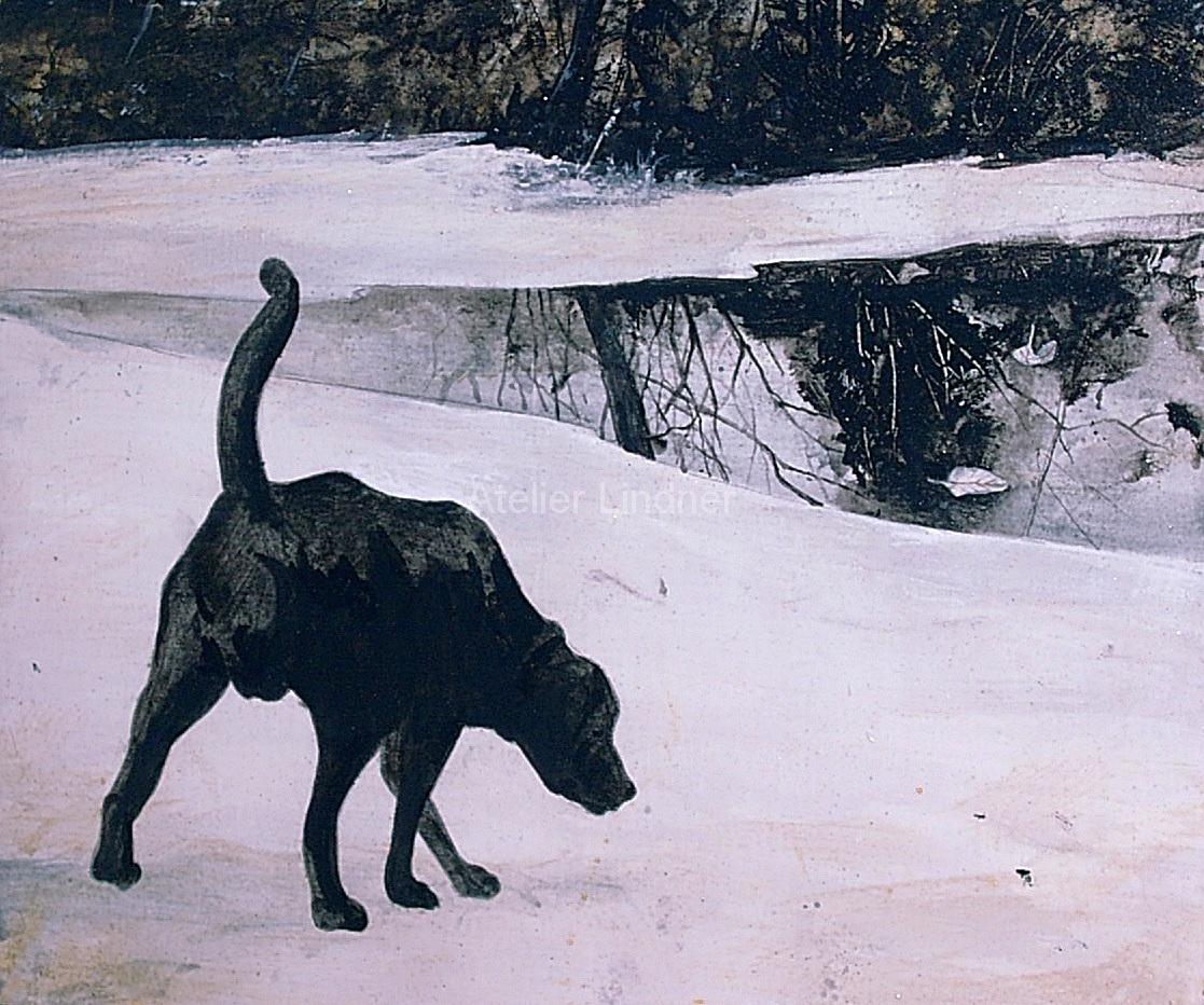 hund-im-schnee1-Kopie