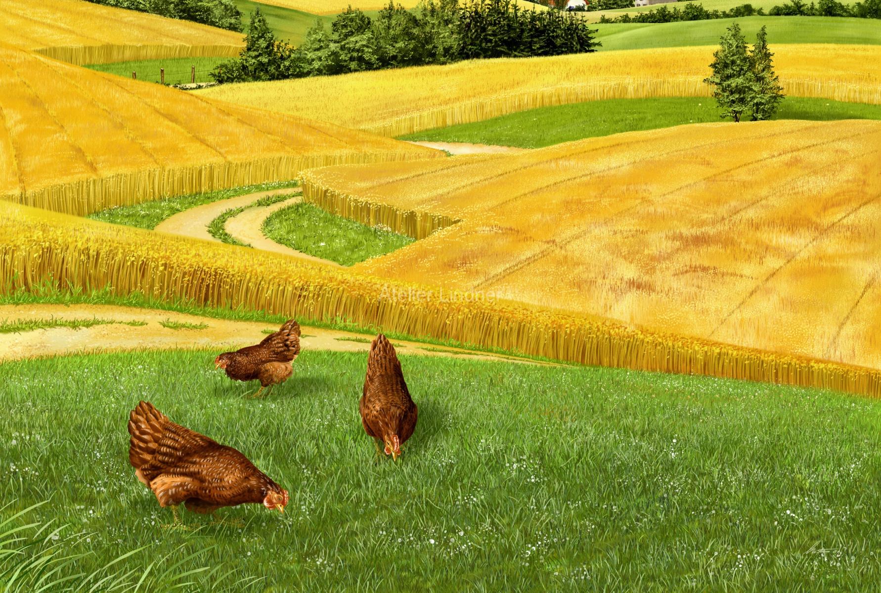 landschaft-mit-hühnern