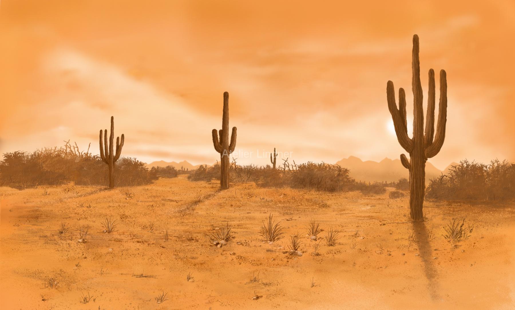 texas4