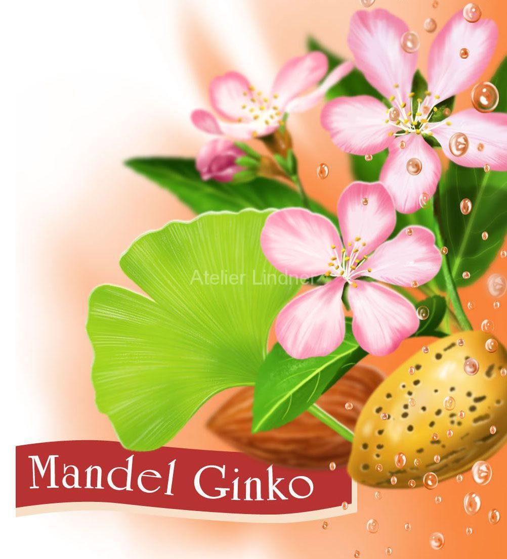 mandel-ginko